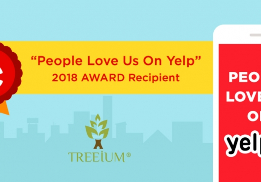 """Treeium Feels The Love In The Air """"People Love Us On Yelp"""" Award Received"""